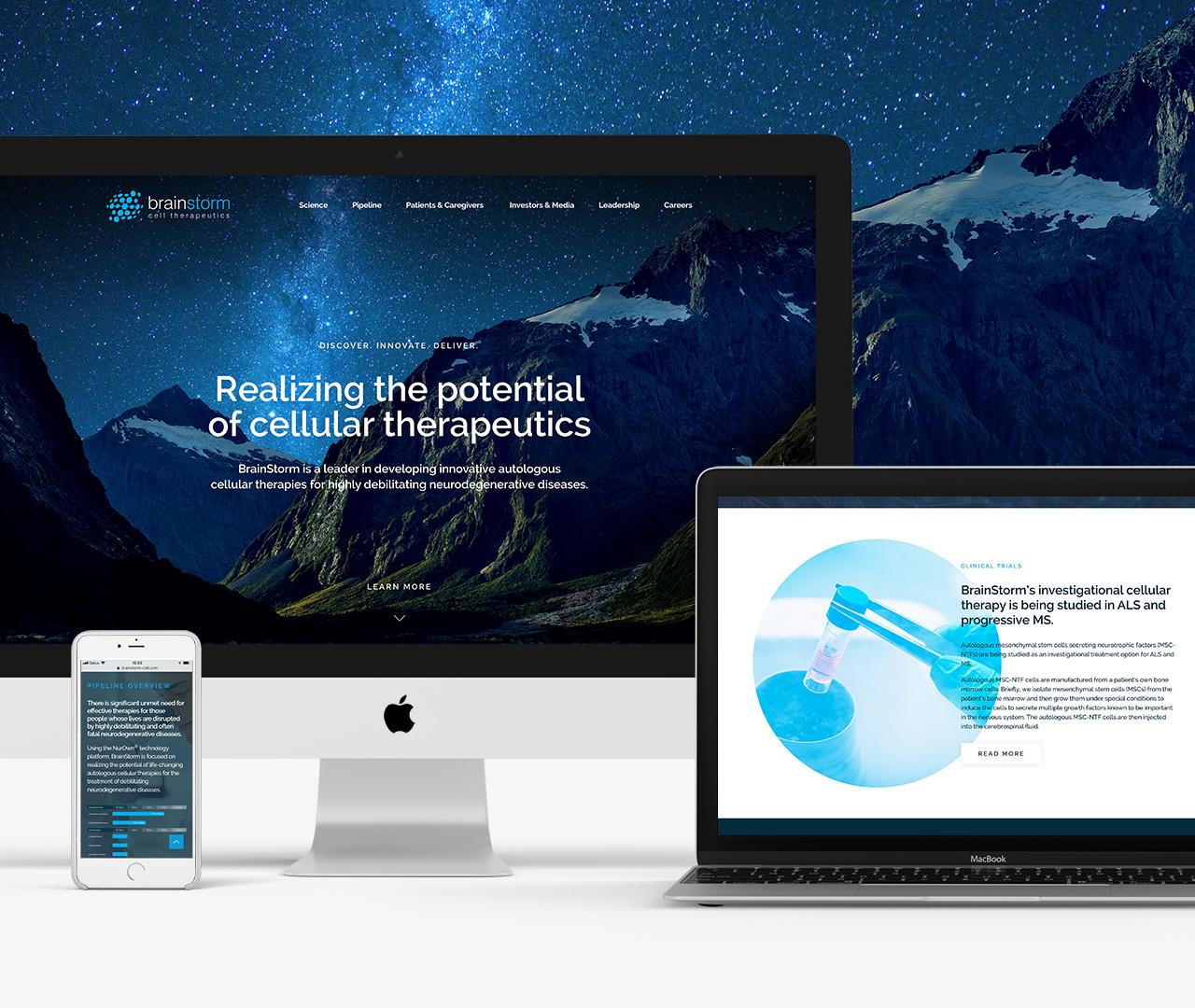 Website for BrainStorm